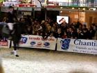 Détente des 3 étalons du Syndicat Linaro présenté au saut.
